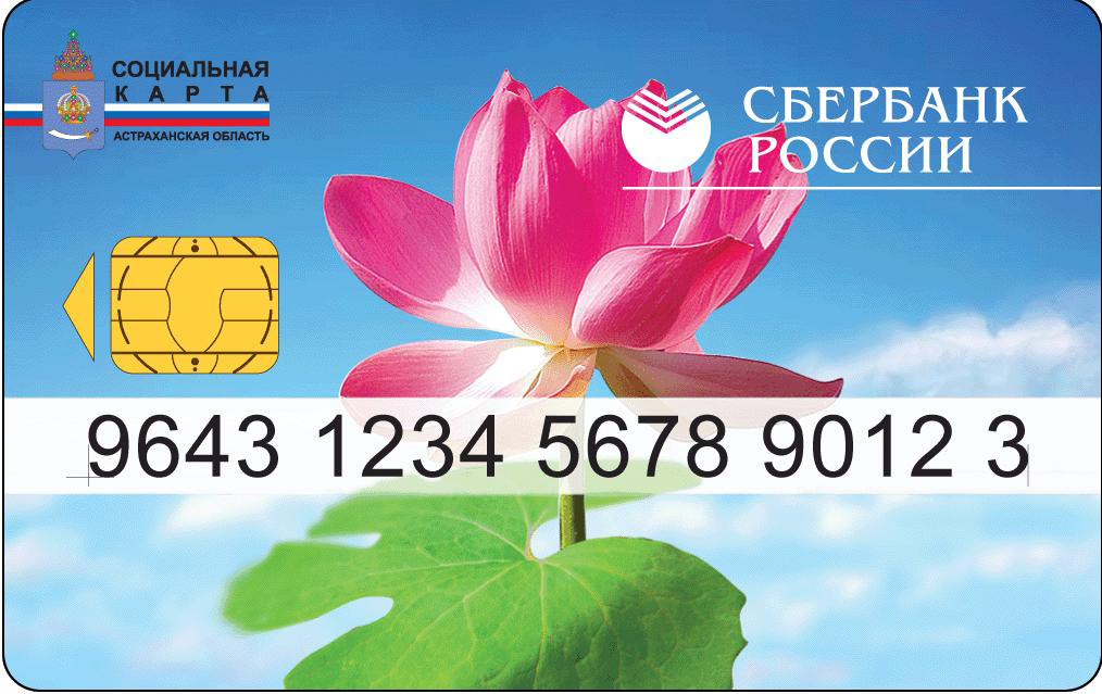 Банковская карта momentium доставка Волгоград